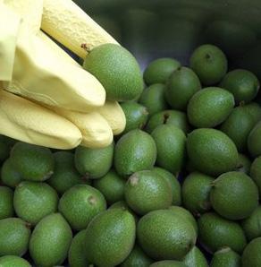 Sirop din coji de nuci verzi