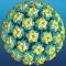 NEGII GENITALI, BANALA INFECTIE CU HPV?